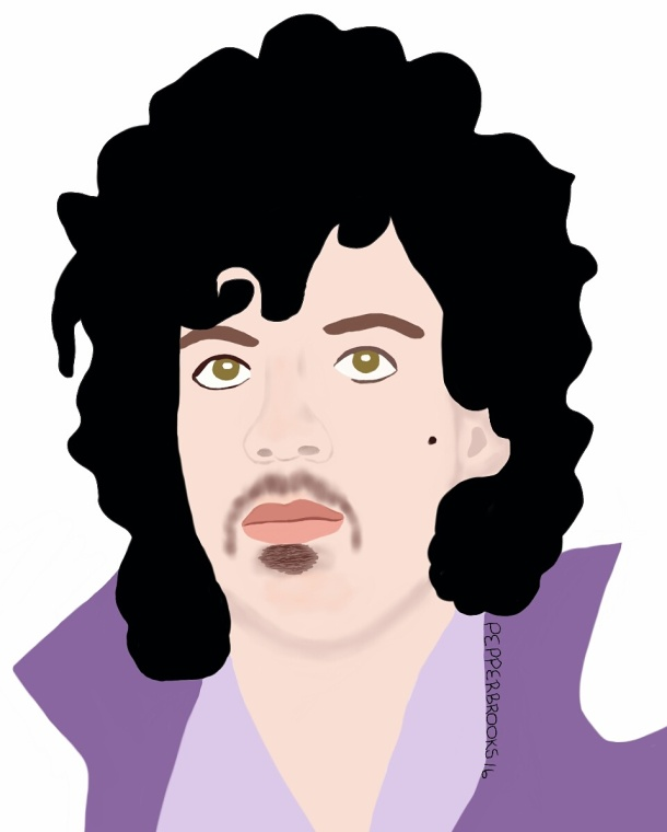 Prince Rogers Nelson illustration